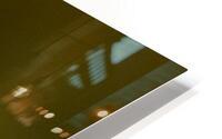 Parakeet HD Metal print