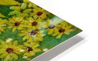 Sunflower HD Metal print