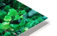Leaves HD Metal print