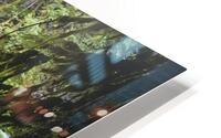 The Mckenzie River HD Metal print