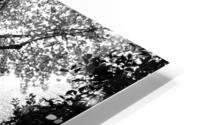 Dead leaves Impression metal HD