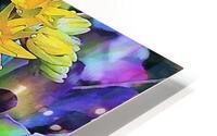Echeveria Hybrid With Yellow Flowers HD Metal print