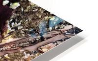 FAIRY AND THE LAKE  Art-Photo 1-4  HD Metal print