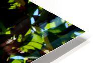 Light Up HD Metal print