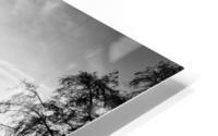 Archeveche bridge Impression metal HD