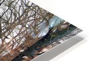 Lake Panorama HD Metal print