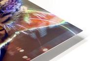 Rainbow Kitten Surprise  HD Metal print