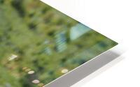 D8061889 B94D 4585 85A6 654F34B6CEB0 HD Metal print
