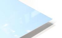 E5551BA9 0D0A 4BCE A22F 7C1BCD9EFC16 HD Metal print