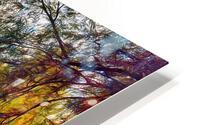 Autumn River HD Metal print