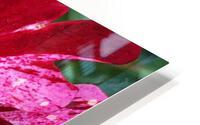 Red Wave HD Metal print