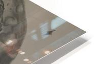 20210527 103804 1622139007.1945 HD Metal print