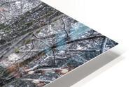 Winter forest HD Metal print