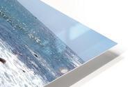 inbound6339561288467504493 HD Metal print