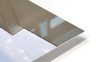 inbound6486568135471198909 HD Metal print