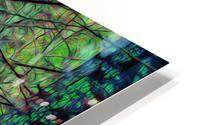 Forest Splendor HD Metal print
