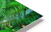 Just Ferns HD Metal print