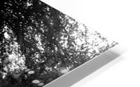 Black and White Field HD Metal print