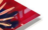 Two Coneflowers HD Metal print