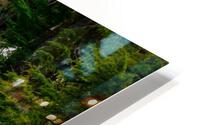 Wild Water in the Mountains HD Metal print