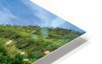 Fireweed at La Grand Falaise HD Metal print