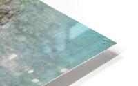 Common Redpoll HD Metal print