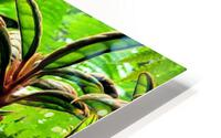 The Greenhouse HD Metal print