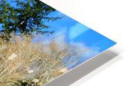 Lay of the land HD Metal print