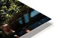 Through the trees HD Metal print