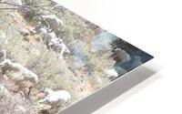 Sheep Huddle HD Metal print