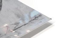Laxmi HD Metal print