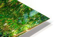 Bamboo HD Metal print