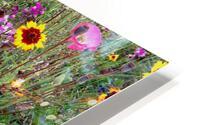 English Cottage Garden Flowers 2 HD Metal print