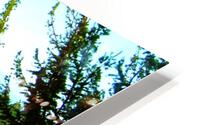 LS027 HD Metal print