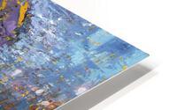 Chesapeake: Flying Embers HD Metal print
