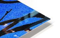Ultramarine Forest Winter Blues I HD Metal print