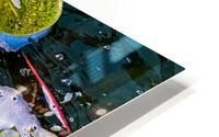 Float Away HD Metal print