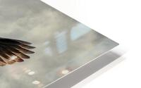 Flight Of The Heron HD Metal print