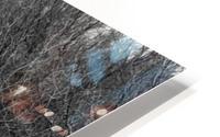 Frozen Wetlands HD Metal print