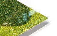 A Hundred Million Suns HD Metal print