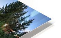 Beavers View of Tetons HD Metal print