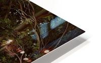 A lovely forest HD Metal print