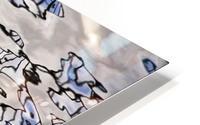 Water Reflections HD Metal print