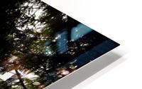 Coastal Scenery, Tofino, British Columbia, Canada HD Metal print