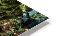 Watefall in the Black Forest in Germany HD Metal print