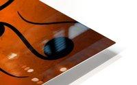 Aspenissia_V1 - violinhair HD Metal print