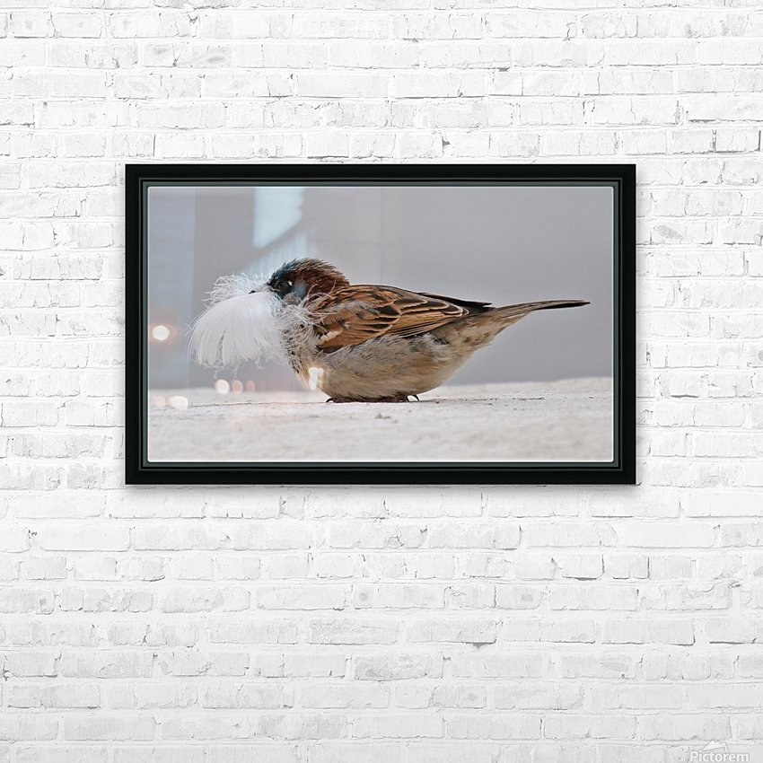 Feather face HD Sublimation Metal print with Decorating Float Frame (BOX)