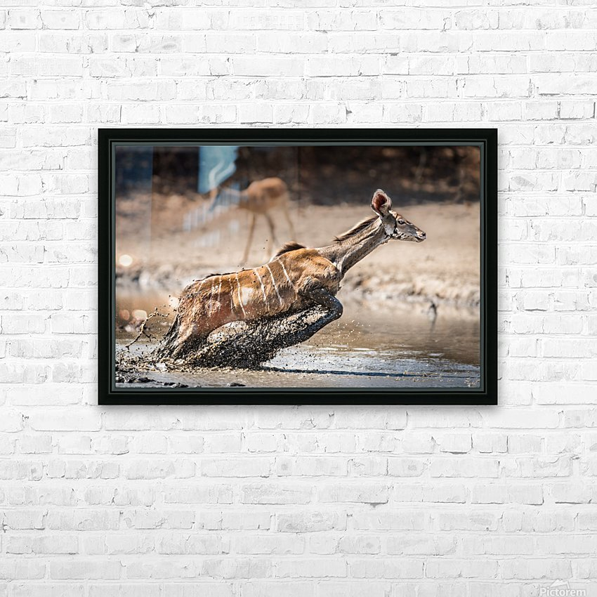 Kudu jump HD Sublimation Metal print with Decorating Float Frame (BOX)