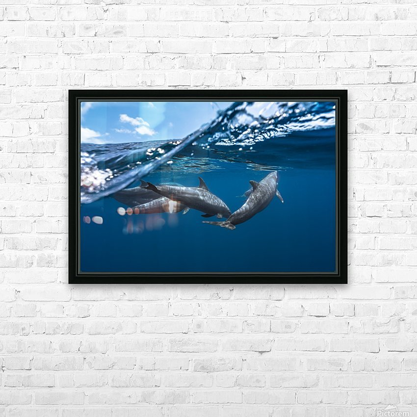 Dolphins HD Sublimation Metal print with Decorating Float Frame (BOX)