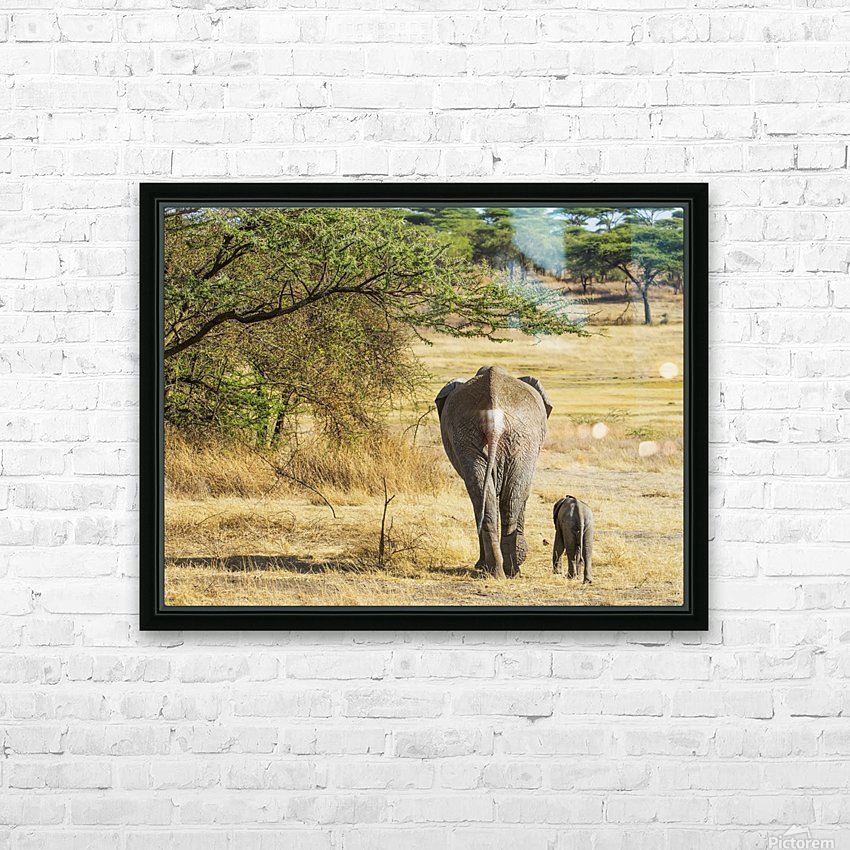 An African Elephant with it's young; Tanzania HD Sublimation Metal print with Decorating Float Frame (BOX)